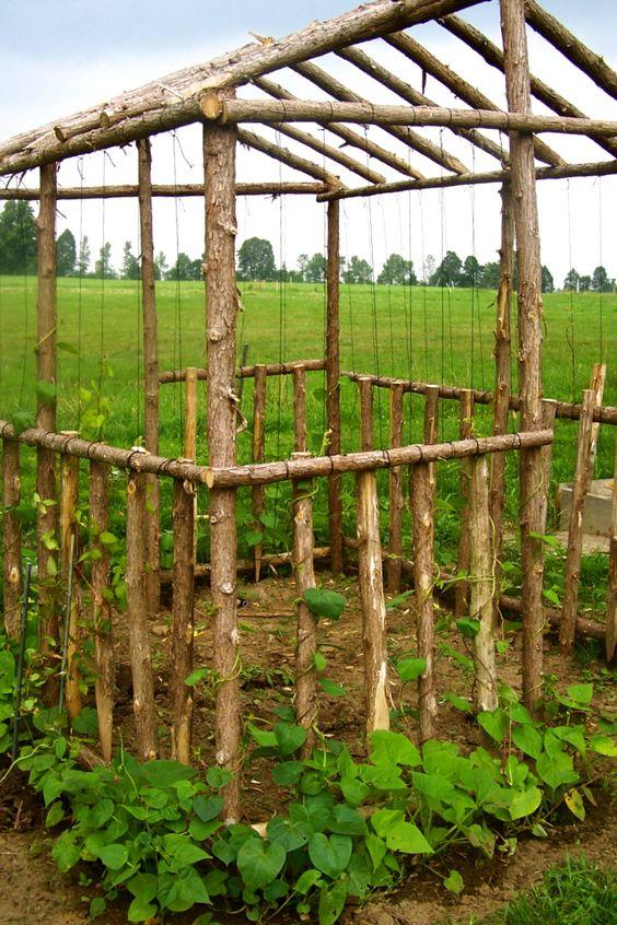 String-bean-house-vertical-gardening