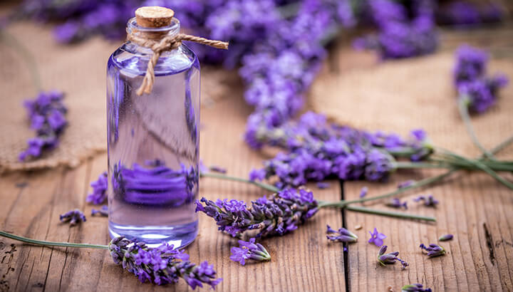 Essential-Oils-For-Feet-Lavender