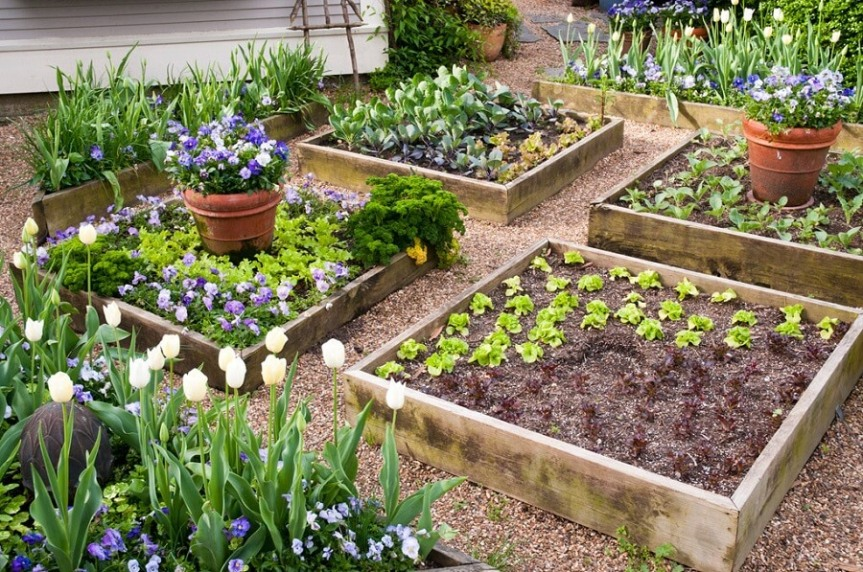 1_different-raised-garden-beds