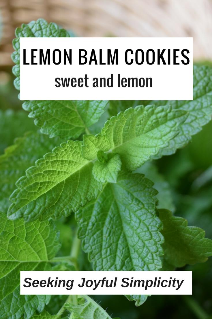 Lemon Balm CookieRecipe