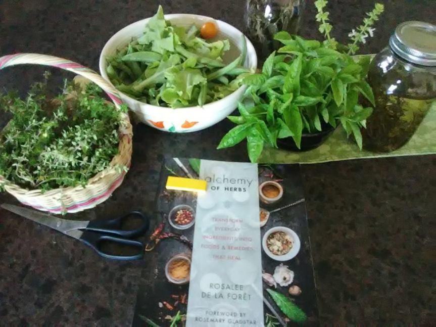 Making Herbal InfusedOils