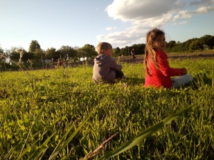 zach and miriam in dad's clover field